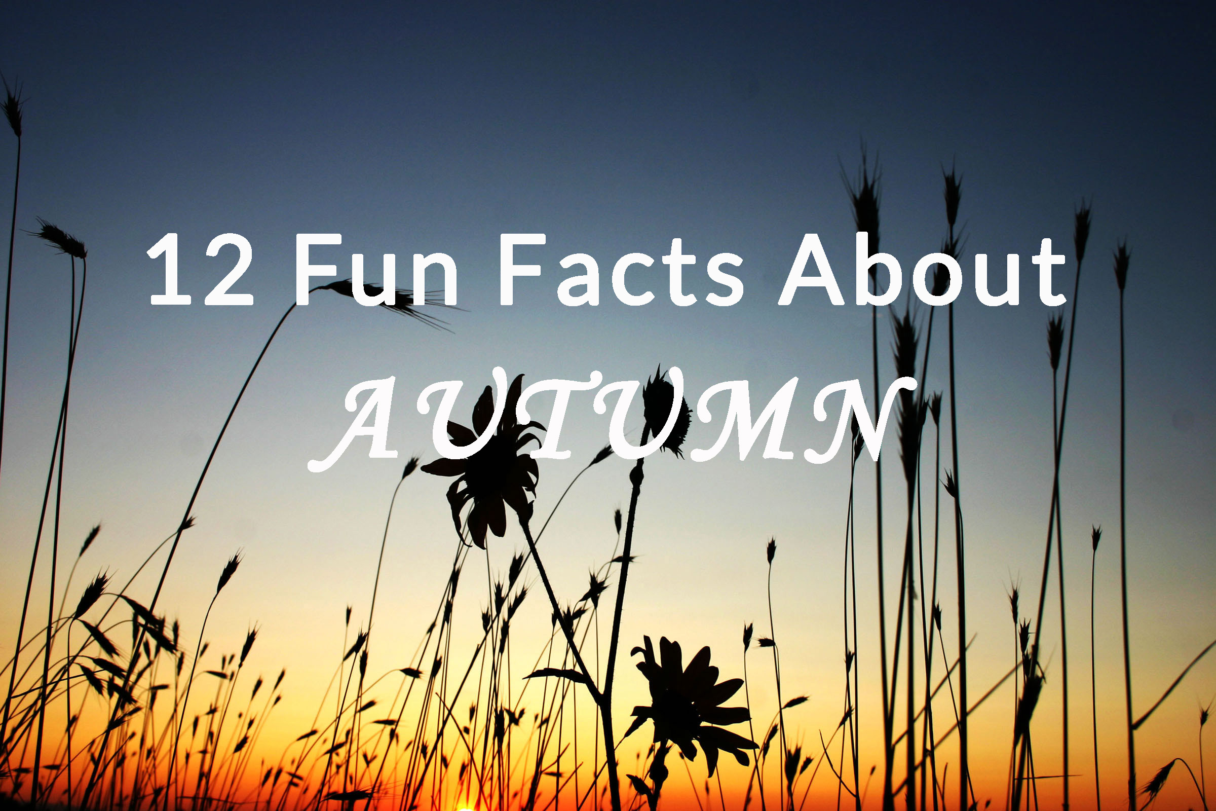 12 Fun Facts About Autumn | Hey Sunny Jess