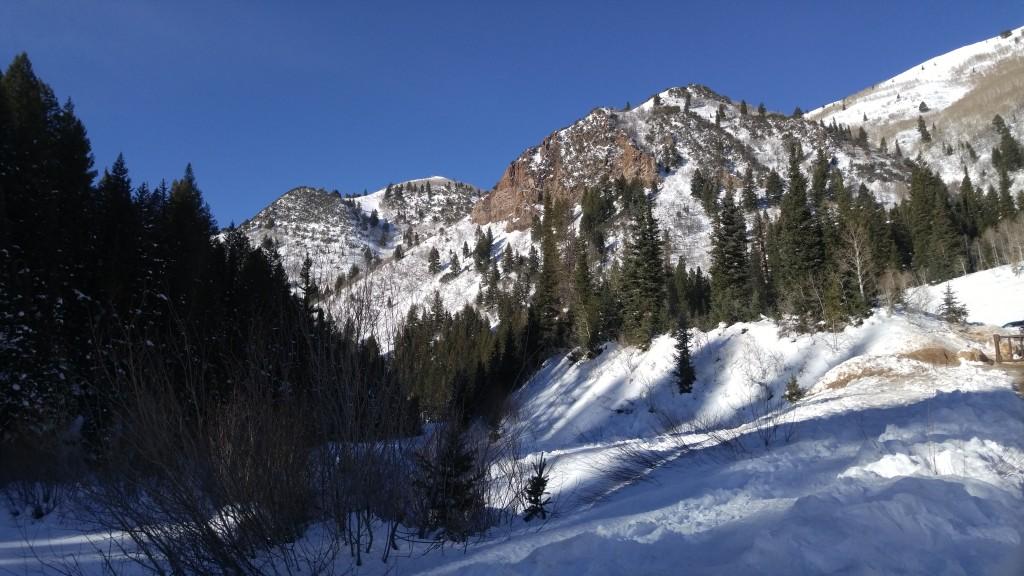 onyx and blush snow 2